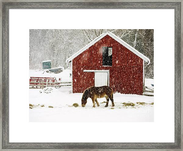 Framed Print featuring the photograph Vermont Christmas Eve Snowstorm by Edward Fielding