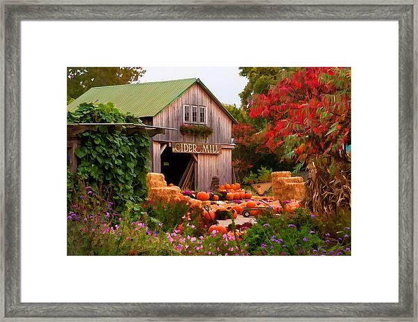Vermont Pumpkins And Autumn Flowers Framed Print