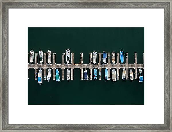 Vertical Alignment Framed Print