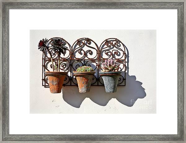 Vertical Cacti Garden Framed Print