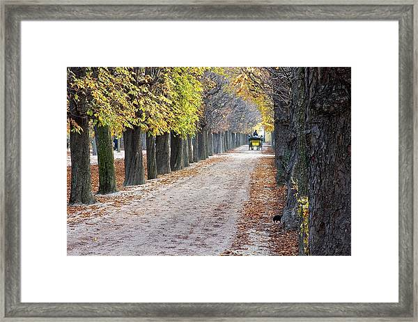 Vienna Cart Path Framed Print
