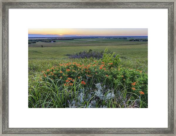 View From Mount Mitchell Framed Print