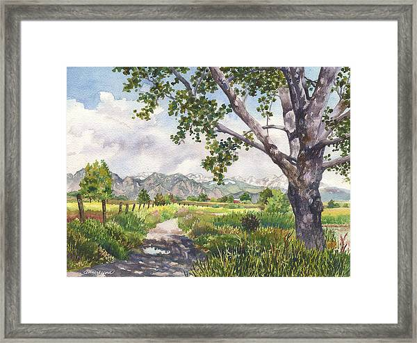 View From Stearns Lake Framed Print