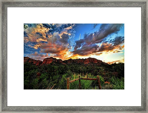 View From The Fence  Framed Print