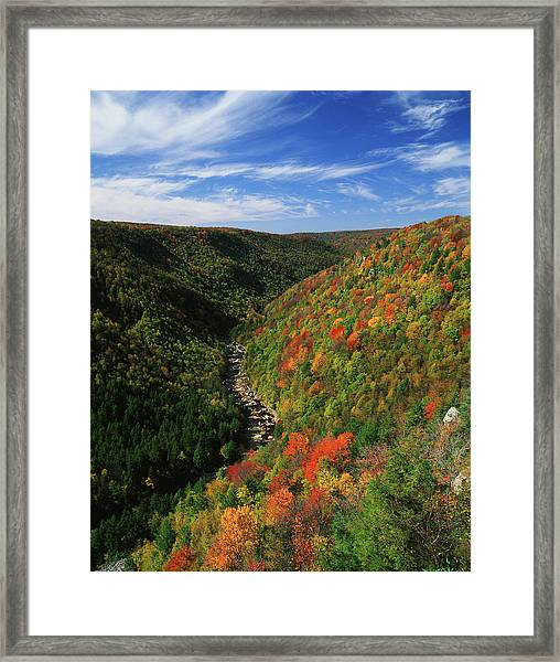 View Of Blackwater Canyon In Autumn Framed Print