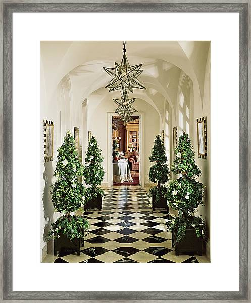 View Of Pine Tree In Corridor Framed Print