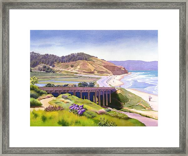 View Of Torrey Pines Framed Print by Mary Helmreich