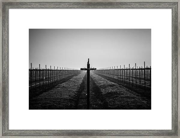 Vineyard Cross Framed Print