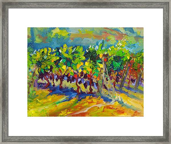 Vineyard Harvest Oil Painting Framed Print