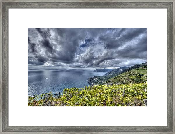 Vineyards Above Cinque Terre Framed Print