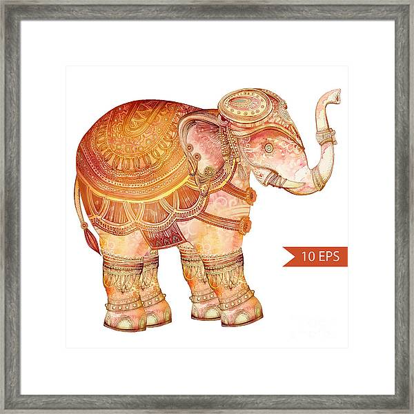 Vintage Elephant Illustration. Hand Framed Print