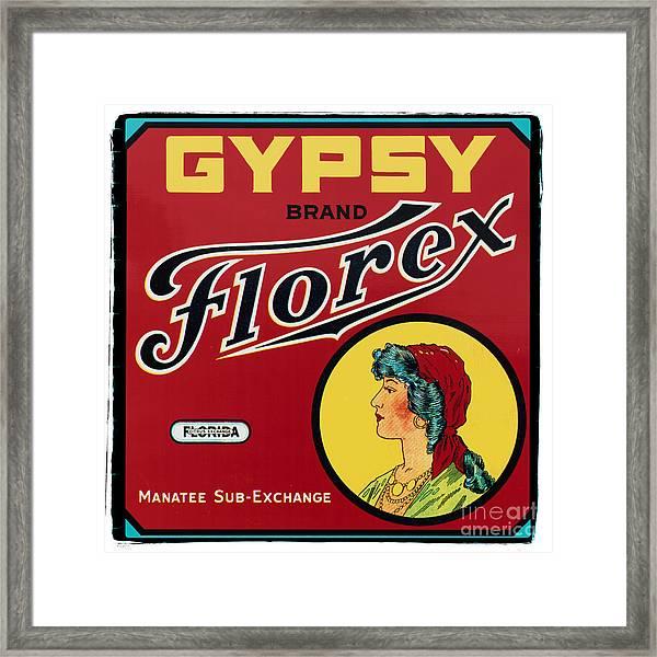 Vintage Florida Food Signs 2 - Gypsy Florex Brand - Square Framed Print