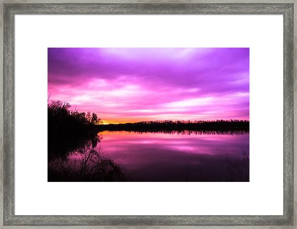 Violet Sky Framed Print
