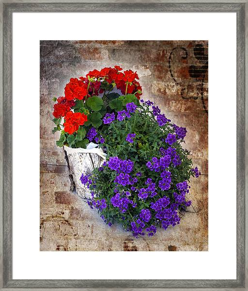 Framed Print featuring the photograph Violets And Geraniums On The Bricks by William Havle