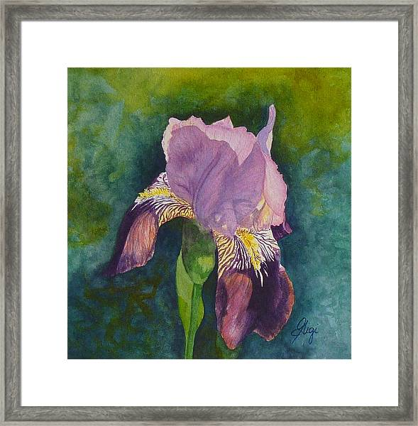 Framed Print featuring the painting Violetta by Gigi Dequanne