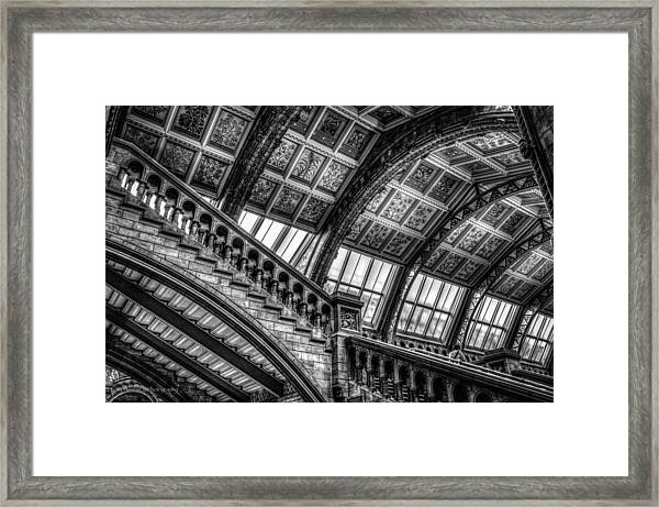 Visitor To The Museum Framed Print