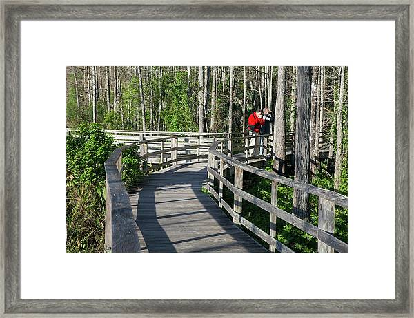 Visitors In A Nature Reserve Framed Print