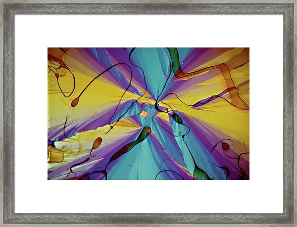 Vitamin E Crystals Framed Print by Dennis Kunkel Microscopy/science Photo Library