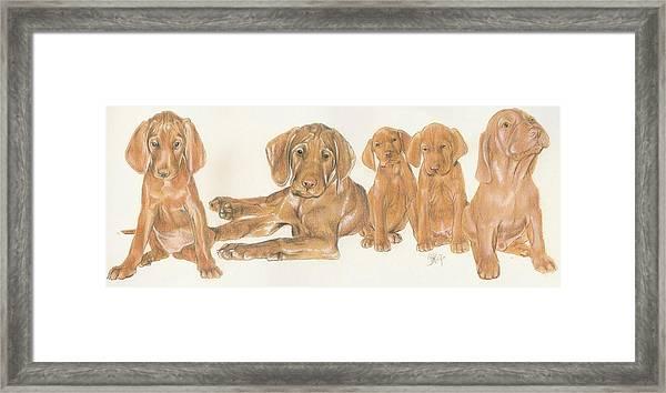 Vizsla Puppies Framed Print