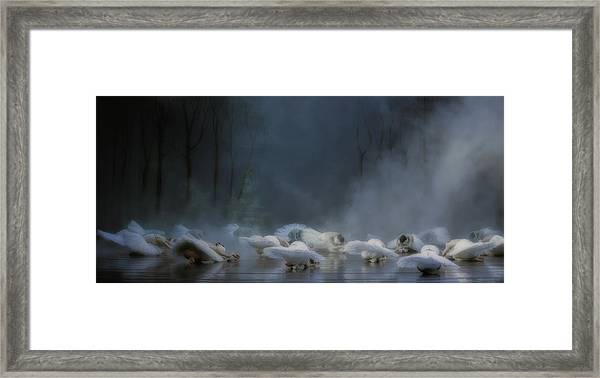 Von Rothbart's Curse Framed Print by Peet Van Den