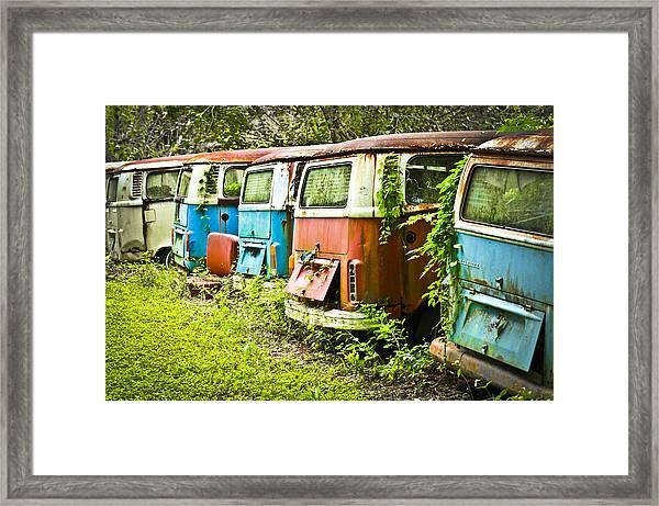 Vw Buses Framed Print