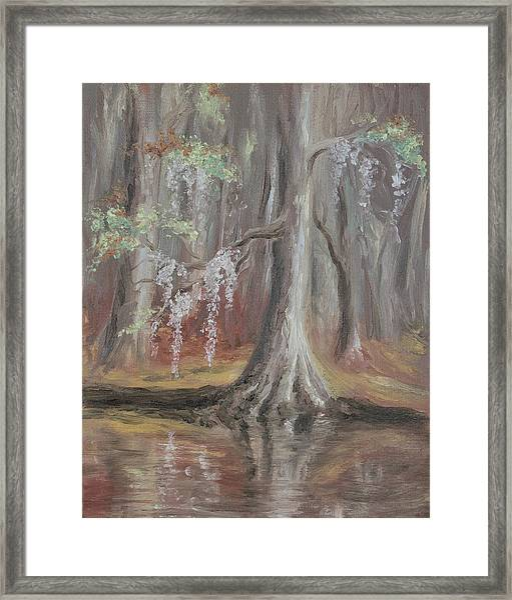 Waccamaw River Cypress Framed Print
