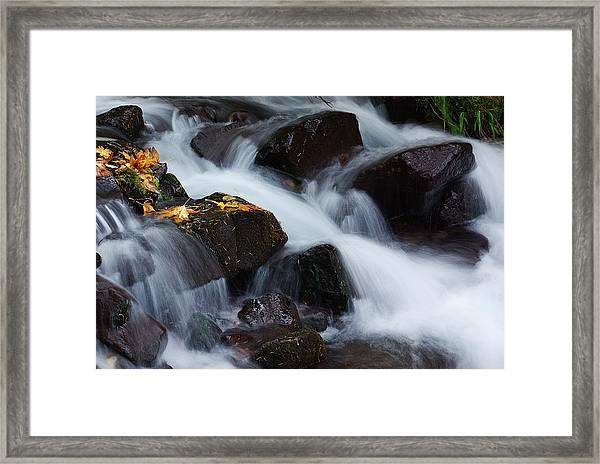 Wahkeena Creek Detail 1 Framed Print