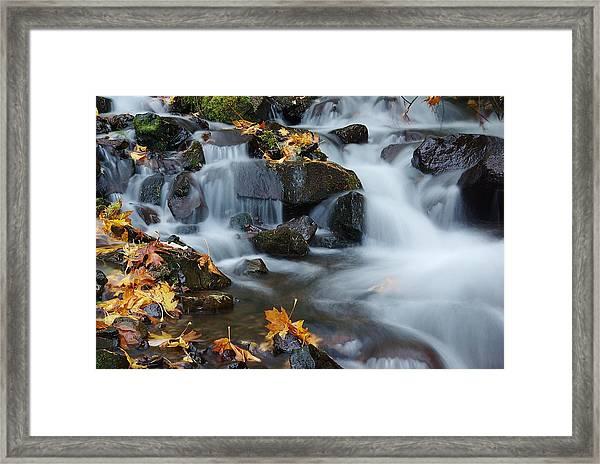 Wahkeena Creek Detail 2 Framed Print