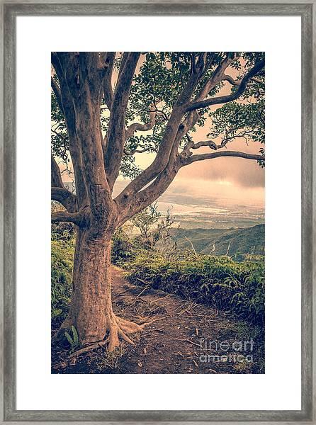Waihee Ridge Trail Maui Hawaii Framed Print