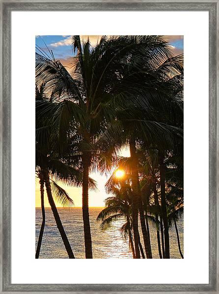 Waikoloa Palms Framed Print