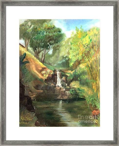 Waimea Falls Oahu Hawaii - 1970 Framed Print