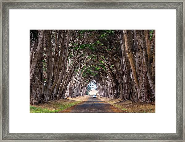 Wait For Me At The End Of Tunnel Framed Print