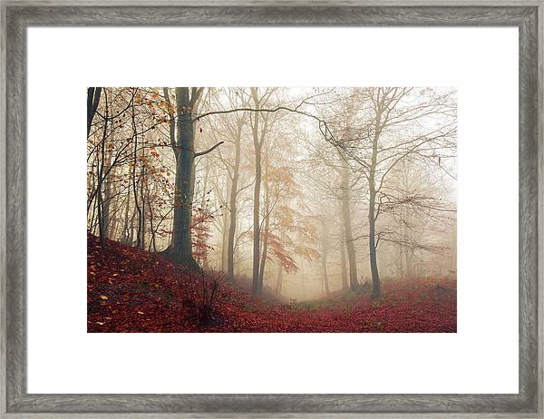 Waiting For The Deer. Framed Print