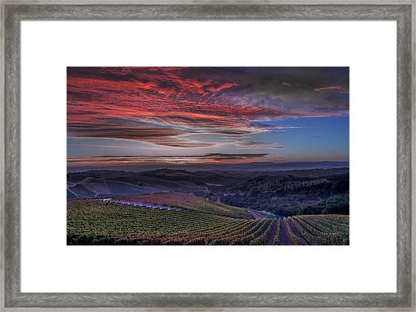 Waiting For The Sun In Adelaida Framed Print