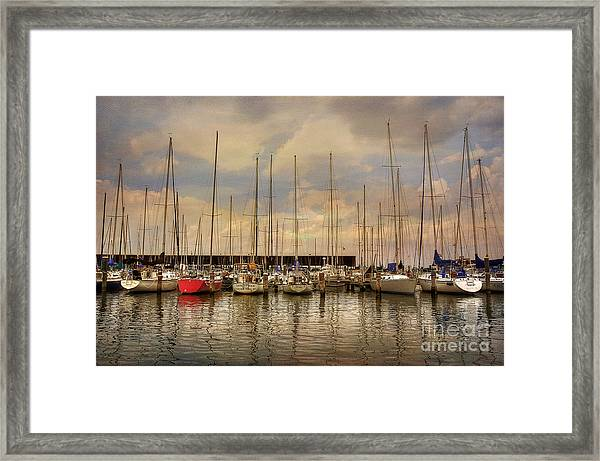 Framed Print featuring the photograph Waiting For The Weekend by Lois Bryan
