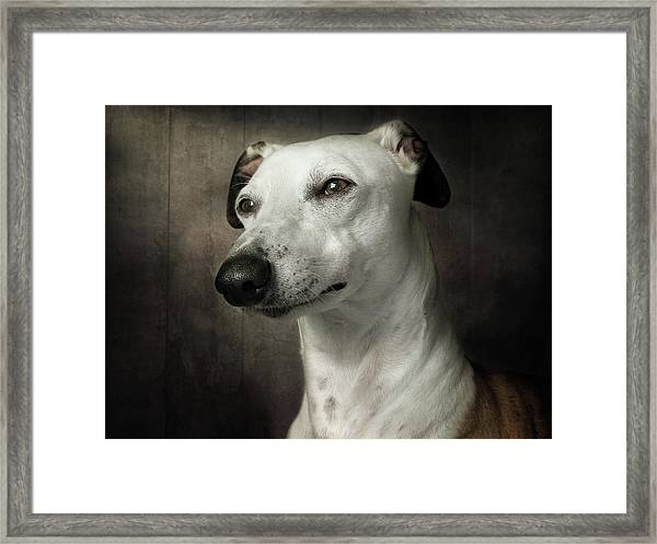 Waiting Framed Print by Mandy Disher