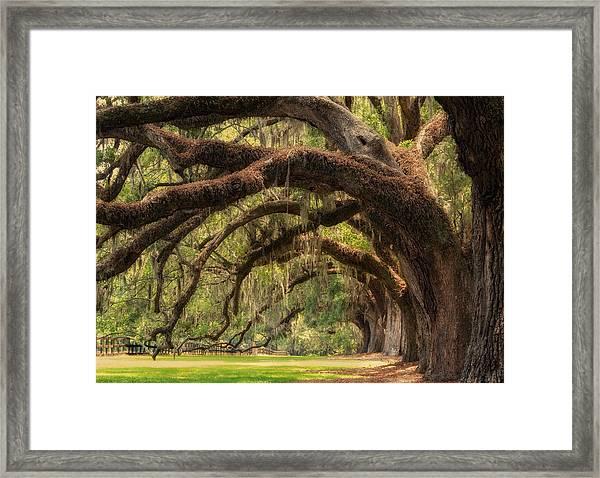 Walk With Me Framed Print
