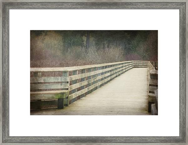 Walking Softly Framed Print