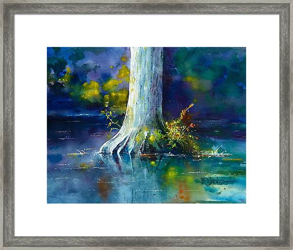 Wall Doxey 12 Framed Print