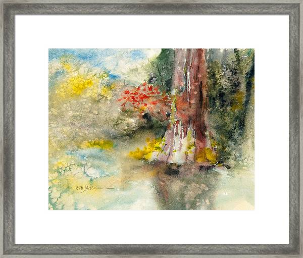 Wall Doxey 6 Framed Print