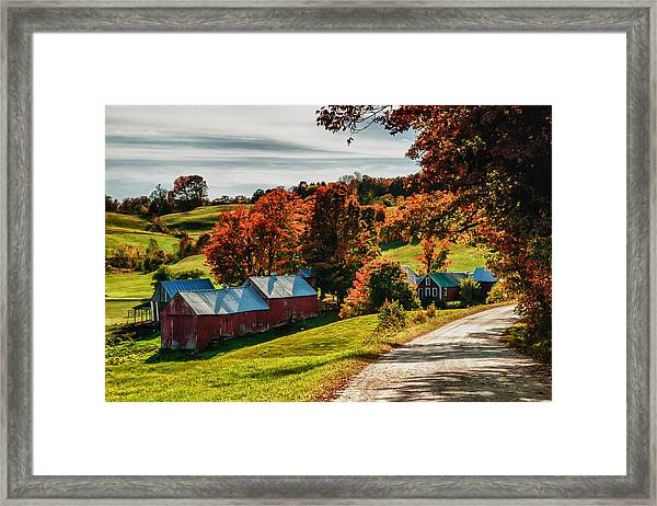 Wandering Down The Road Framed Print