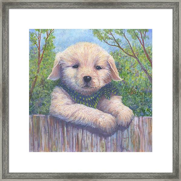 Wanna Play? Framed Print by June Hunt