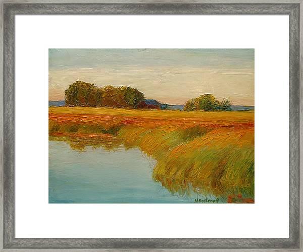 Warm Sunset On The Bog Framed Print