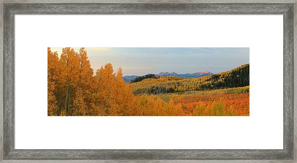 Wasatch Gold Framed Print