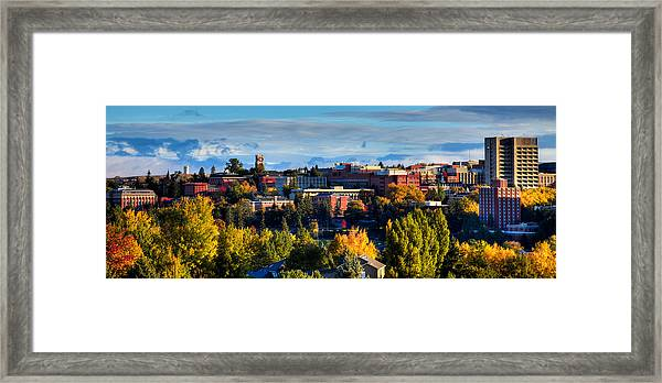 Washington State University In Autumn Framed Print