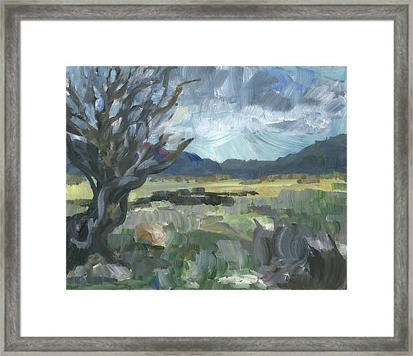 Washoe Valley Framed Print by Susan Moore