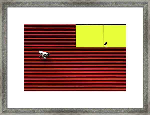 Watch Out Framed Print by Marc Huybrighs