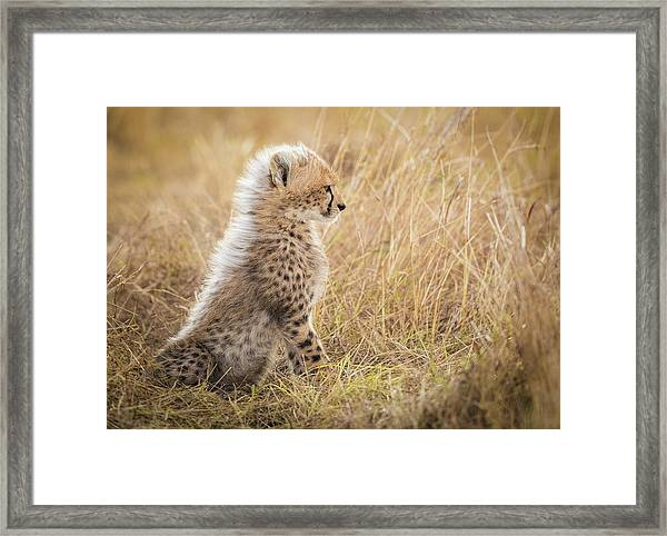 Watching You Mom Framed Print