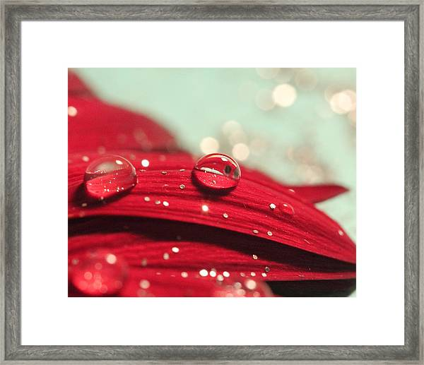 Water Drops And Glitter Framed Print
