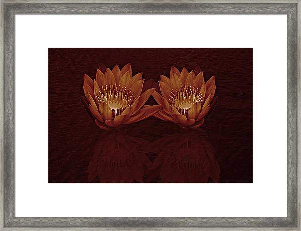 Framed Print featuring the photograph Water Lilies In Deep Sepia by David Dehner